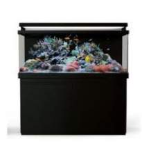 Red Sea Max S-650 Complete Reef System s LED svetlami