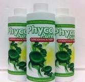 PhycoPure Greenwater,-zelená riasa na kŕmenie a redukcii NO3, PO4 a kovov